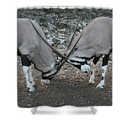 Strength Of Honor Shower Curtain