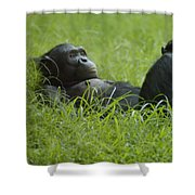 Stress Relief Shower Curtain