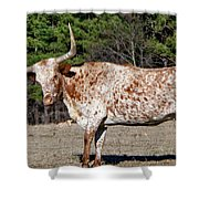 Strike A Pose - Longhorn Style Shower Curtain