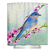 Striking A Pose Shower Curtain