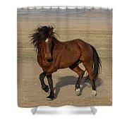 Striking A Pose Shower Curtain by Nicole Markmann Nelson
