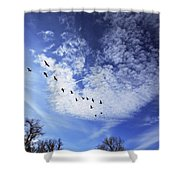 String Of Geese Shower Curtain