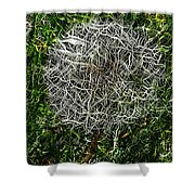 String Theory Dandelion Shower Curtain