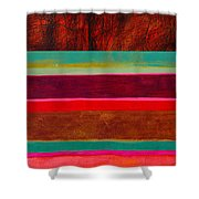 Stripe Assemblage 1 Shower Curtain