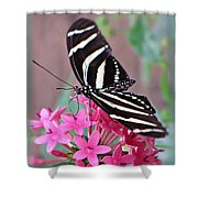 Striped Beauty - Butterfly Shower Curtain