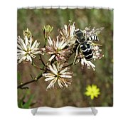 Striped Bee Shower Curtain