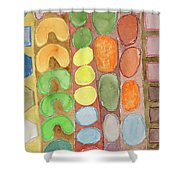 Striped Colorful Pattern With Croissants  Shower Curtain