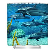 Striped Dolphins Shower Curtain