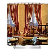 Striped Room Shower Curtain