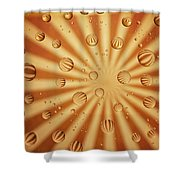 Striped Sassy Shower Curtain