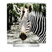 Stripes And Symmetry  Shower Curtain
