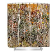 Stripped Bare To The Bark Shower Curtain