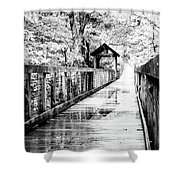 Stroll Through The Woods Shower Curtain by Valeria Donaldson