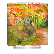Strolling Along The Canal Shower Curtain