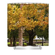Strolling In Waterfront Park Shower Curtain