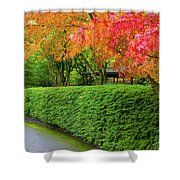 Strolling Path Lined With Japanese Maple Trees In Fall Shower Curtain