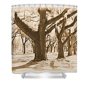 Strong And Proud In The South - Old World Shower Curtain