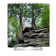 Strong Roots Shower Curtain