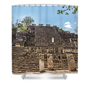 Structure Two In Calakmul Shower Curtain