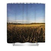 Stubble Field  Shower Curtain