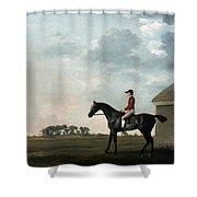 Stubbs: Gimcrack, 1765 Shower Curtain