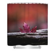 'stuck In Autumn' Shower Curtain