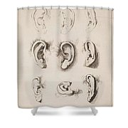 Studies Ears Anonimo, Blooteling Abraham Shower Curtain