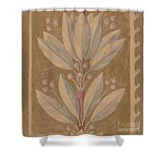 Study For A Border Design [recto] Shower Curtain