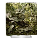 Study From Nature   Rocks And Trees Shower Curtain