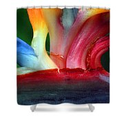 Study Of A Bird Of Paradise 3 Shower Curtain