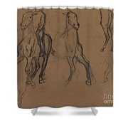 Study Of Horses Shower Curtain