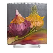 Study Of Onions Shower Curtain