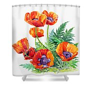 Study Of Poppies Shower Curtain