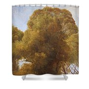 Study Of Trees 1849 Shower Curtain