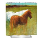 Study Of Two Ponies Shower Curtain