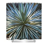 Stunning Agave Plant Shower Curtain