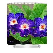 Stunning Blue Flowers Shower Curtain