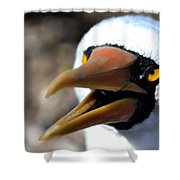 Stunning Nazca Booby Shower Curtain
