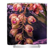 Stylized Orchids Shower Curtain