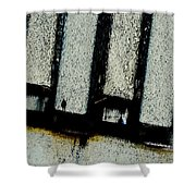 Subdivisions Shower Curtain