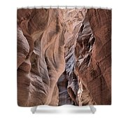 Subdued Colors Of Buckskin Shower Curtain