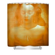 Subdued Glamor Shower Curtain