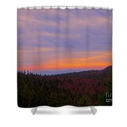 Sublime Shower Curtain