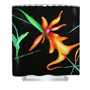Sublime Shower Curtain