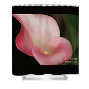 Subtle Calla Lily Shower Curtain