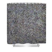 Subtle Lichen On Granite Texture Shower Curtain