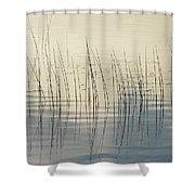 Subtle Serenity Shower Curtain
