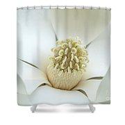 Subtle Southern Magnolia Shower Curtain