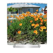 Suburban House On Orchard Avenue With Poppies Hayward California 3 Shower Curtain