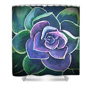 Succulant Shower Curtain